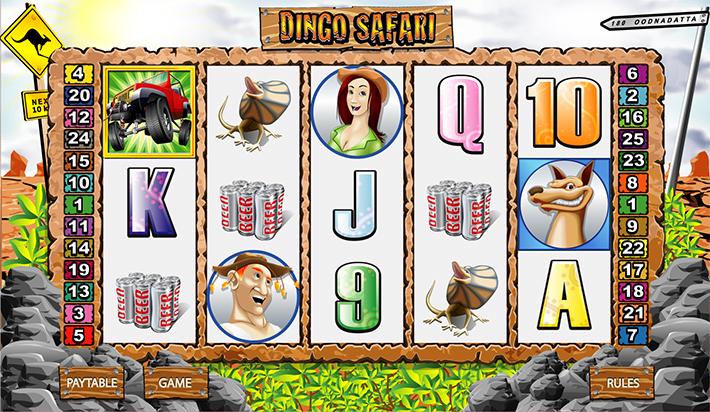 Dingo_Safari_Reels