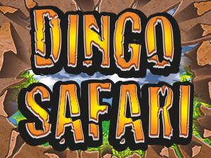 Dingo Safari